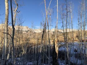 TBD Meadow Drive Telluride CO 81435