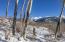 TBD Joaquin Road, Telluride, CO 81435