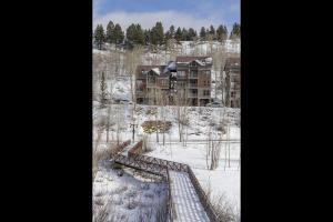 327 Adams Ranch Road Mountain Village CO 81435