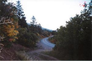 4151 County Road 17 Ridgway CO 81432