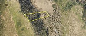 1151 Peninsula Drive Placerville CO 81430