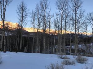 TBD Singletree Way Mountain Village CO 81435