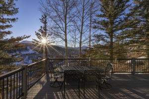 226 Country Club Drive Mountain Village CO 81435