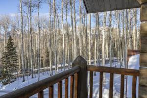 300 Elk Park Road Telluride CO 81435