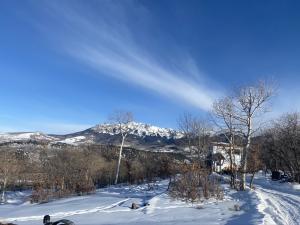 807 Harcourt Trail Placerville CO 81430