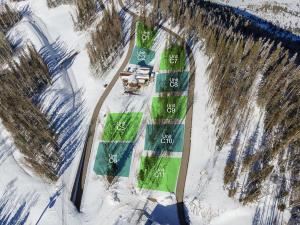 #11 Coonskin Ridge Lane Mountain Village CO 81435