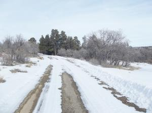 1100 N Gurley Lake Drive Norwood CO 81423