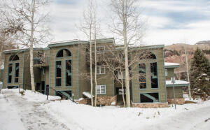 451 S Pine Street Telluride CO 81435