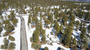 1960 Marmot Drive Ridgway CO 81432