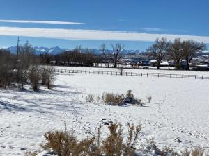 16550 6475 Road Montrose CO 81403