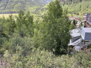240 Tomboy Road Telluride CO 81435
