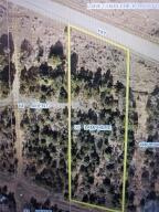 Lot 5 County Road Y43 Norwood CO 81423