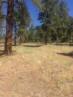 Tract A1 Brown Ranch Road Placerville CO 81430
