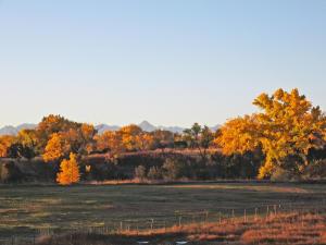 59346 Spring Creek Road Montrose CO 81403