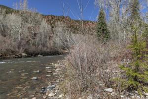 4 River Trail Placerville CO 81430