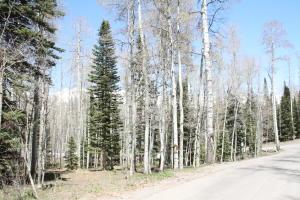 TBD Fox Farm Road Telluride CO 81435