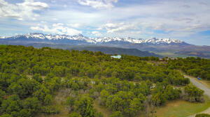196 S Tower Road Ridgway CO 81432