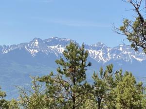 TBD Pine Drive Ridgway CO 81432