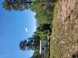 TBD Grean Meadows Ln. Lot 126 Placerville CO 81430