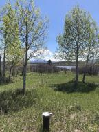 TBD N Gurley Lake Drive Norwood CO 81423