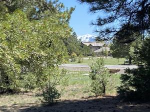 1148 Marmot Drive Ridgway CO 81432