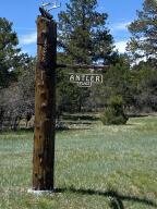 TBD Antler Lot 251 Place Ridgway CO 81432