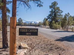 193 Fisher Canyon Drive Ridgway CO 81432