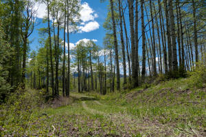 TBD Preserve Drive Telluride CO 81435