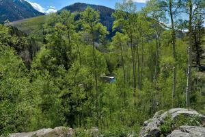 6829 County Rd 63L Telluride CO 81435