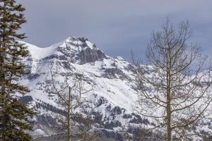 Lot 16 Cortina Drive Mountain Village CO 81435