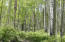 Extraordinary Aspen groves, on both lots, provide a lush and alluring environment.