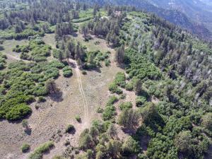 TBD Canyon Rim Loop Placerville CO 81430