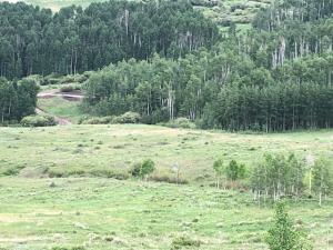 TBD Little Cone Ranch Road Placerville CO 81430