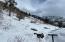 TBD Primrose, Telluride, CO 81435