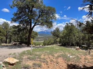 60 Camino San Juan Ridgway CO 81432