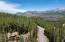 162 San Joaquin Road, Mountain Village, CO 81435