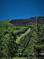 874 Butcher Creek Drive Telluride CO 81435