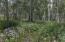TBD Saddle Horn Lane, Telluride, CO 81435