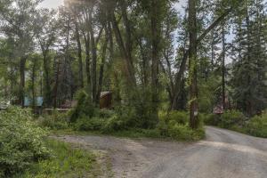 Lot 5 River Trail Placerville CO 81430