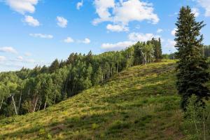 800 Black Bear Road Telluride CO 81435