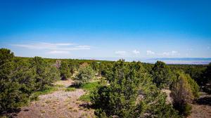 TBD Sage Road Montrose CO 81403