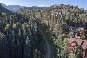 141 Tristant Drive, Mountain Village, CO 81435