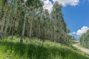 2B Spruce Mountain Lane Ridgway CO 81432