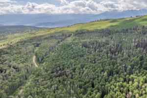 4B & 4C Spruce Mountain Lane Ridgway CO 81432