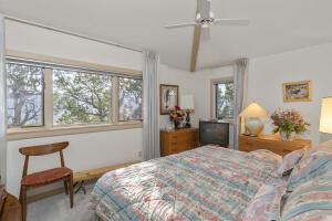 741 Terrace Drive Ridgway CO 81432