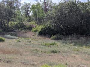 451 Birdsong Lane Montrose CO 81403