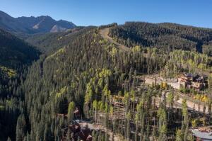 5 Stonegate Drive Mountain Village CO 81435