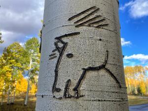 Horse Head Art on Lot 20