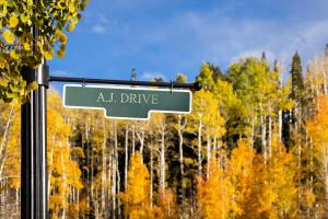 TBD AJ Drive Mountain Village CO 81435