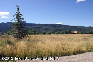 9385 CONNOR DR, Victor, ID 83455